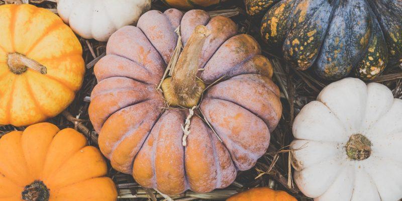 Pumpkins nestled in hay.